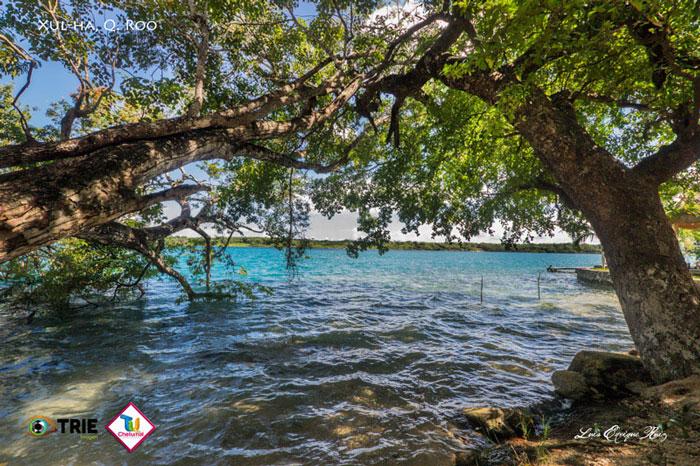 Lagunas cercanas a Chetumal que tienes que conocer